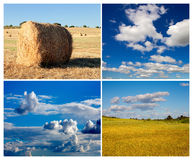 Collage of photos of meadow and sky in summer Royalty Free Stock Photography