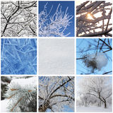 Winter. Collage with photos of nature at winter Royalty Free Stock Images