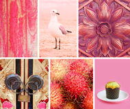Collage of photos in pink colors Stock Photo