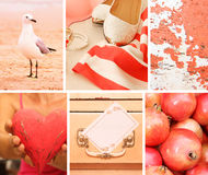 Collage of photos in pink colors Stock Images