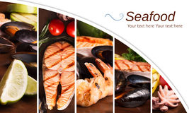 Collage from photos of seafood Stock Photography