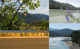 Collage of photos taken in the Altai Stock Image