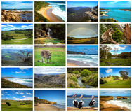 Collage of pictures from australia Stock Photos
