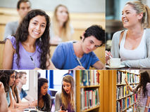 Collage of pictures showing students Stock Photography
