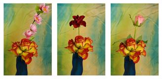 Collage with pink rose and vase Stock Photos