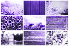 Collage of popular backgrounds / textures - wooden, brick, metal, floral, abstract in a trendy color concept of the year 2018 ultr stock photo
