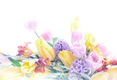 Collage postcard art background mix of flowers Royalty Free Stock Images