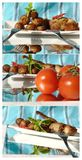 Collage with potato, meat, chili Royalty Free Stock Image