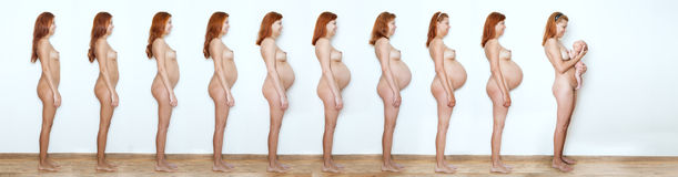 Collage pregnant woman beginning to end, nine  months, nine stat Royalty Free Stock Photo