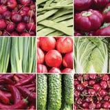 Collage quadrato degli alimenti vegetali verdi e rossi Fotografia Stock
