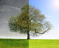 Collage rain vs. sun Stock Image