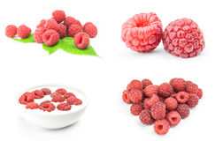 Collage of raspberry on white background. Collage of raspberry  on a white background cutout Stock Images