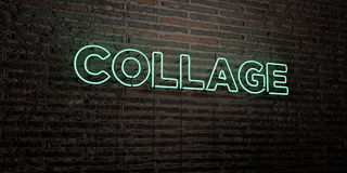COLLAGE -Realistic Neon Sign on Brick Wall background - 3D rendered royalty free stock image Stock Photography