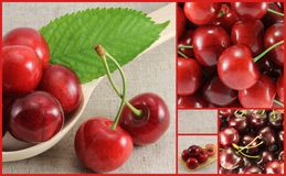 Collage of red cherry-rectangle. Golden Section Stock Photos