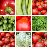 Collage of red and green vegetables. Red and green vegetables closeup royalty free stock photo