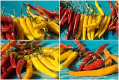 Collage with red, yellow chili Stock Images