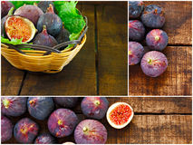 Collage of ripe purple figs Royalty Free Stock Images