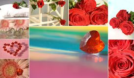Collage with rose and heart Stock Photos