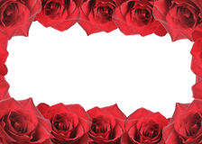 Collage of roses forms border Royalty Free Stock Image
