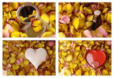 Collage with roses, hearth Royalty Free Stock Images