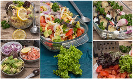 Collage salads of fresh vegetables Stock Images