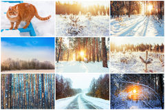Collage, Satz Abbildung kann als Hintergrund benutzt werden Stockfotos