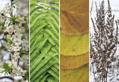 A collage of scenes of the four seasons Stock Images