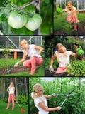 Collage. Schöne beiläufige Frauengartenarbeit Stockfotos