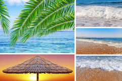 Collage sea beach picture background. Close stock photos