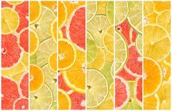 Collage senza cuciture astratto degli agrumi Fotografie Stock