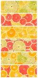 Collage senza cuciture astratto degli agrumi Immagini Stock Libere da Diritti