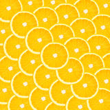Collage from a set of citrus fruit Stock Photography