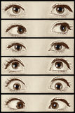 Where are you looking?. Collage set of close-up shots eyes Royalty Free Stock Image