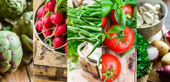 Collage set fresh organic vegetables herbs. Ripe tomatoes, radish, green beans, artichokes, mushrooms, potatoes, parsley, garlic. Royalty Free Stock Images
