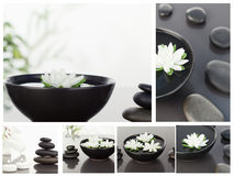 Collage of several bowls Royalty Free Stock Image