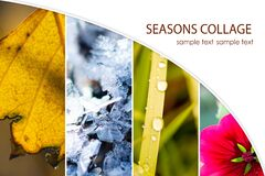 Free Collage Showing 4 Seasons. Collage With Grass, Flower, Icicles, Birch Leaf Stock Photography - 187288122