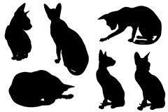 Collage of silhouettes cat Royalty Free Stock Photos