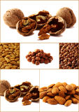 Collage of six pictures of different nuts Stock Photos