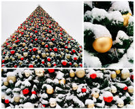 Collage of snow-covered christmas tree Royalty Free Stock Photos