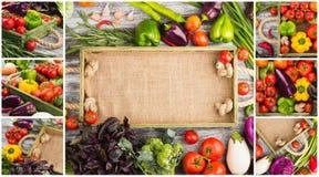 Collage som göras från olika nya rå färgrika grönsaker i royaltyfri bild