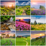 Collage with 9 square summer landscapes. Stock Image