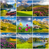 Collage with 9 square summer landscapes. Stock Photos