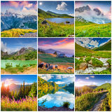 Collage with 9 square summer landscapes. Stock Images