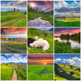 Collage with 9 square summer landscapes. Stock Photography