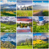Collage with 9 square summer landscapes. Stock Photo