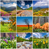 Collage with 9 square summer landscapes. Royalty Free Stock Photos