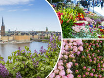 Collage of Stockholm ( Sweden ) images - travel background (my p Royalty Free Stock Photos