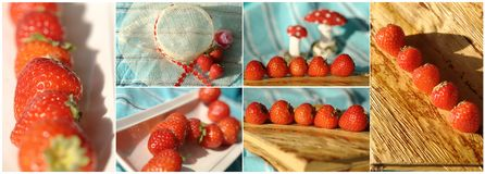 Collage with strawberries and mushrooms Stock Photos