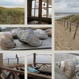 Collage summer on the beach Royalty Free Stock Photo