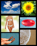 Collage of the summer Royalty Free Stock Photo